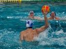 Wasserball Herren